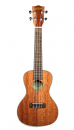 Kala KA-CG Mahogany Concert Ukulele with Gloss Finish